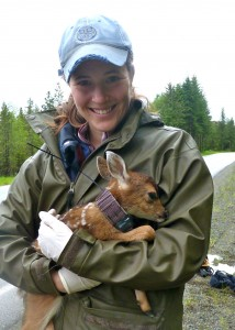 Sophie Gilbert holding one of the subjects of her research: a Sitka black-tailed deer fawn.