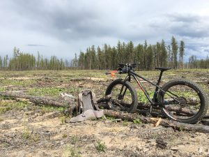 Fat bike in the field. Taking a break during acoustic recording unit deployment.